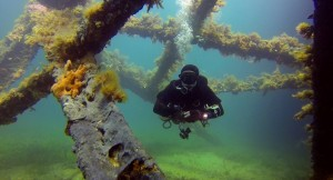 Image 4 - Diving 2